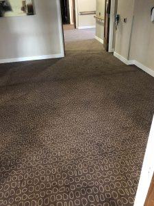 IG flooring - commercial carpets (1)
